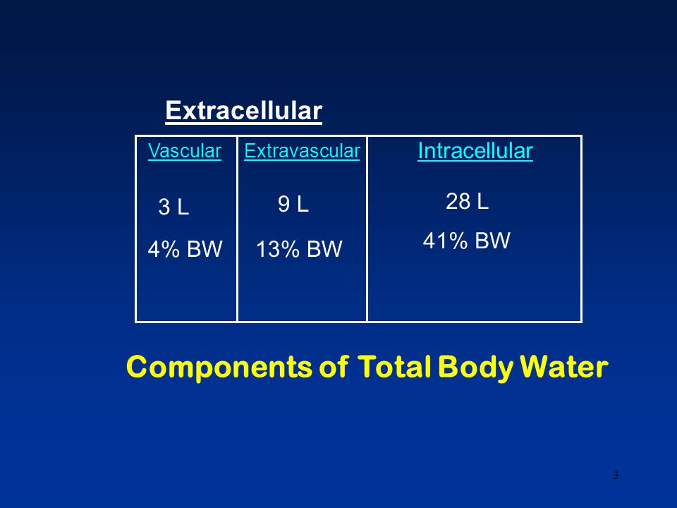 3 Components of Total Body Water Vascular 3 L 4% BW Extravascular 9 L 13% BW Extracellular Intracellular 28 L 41% BW