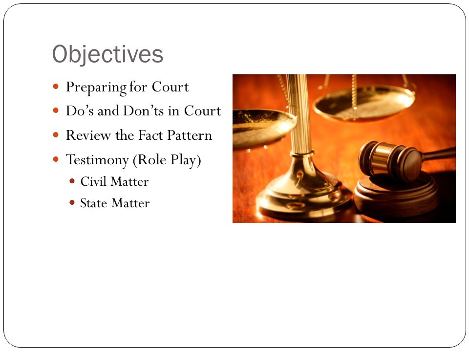 Objectives Preparing for Court Do's and Don'ts in Court Review the Fact Pattern Testimony (Role Play) Civil Matter State Matter