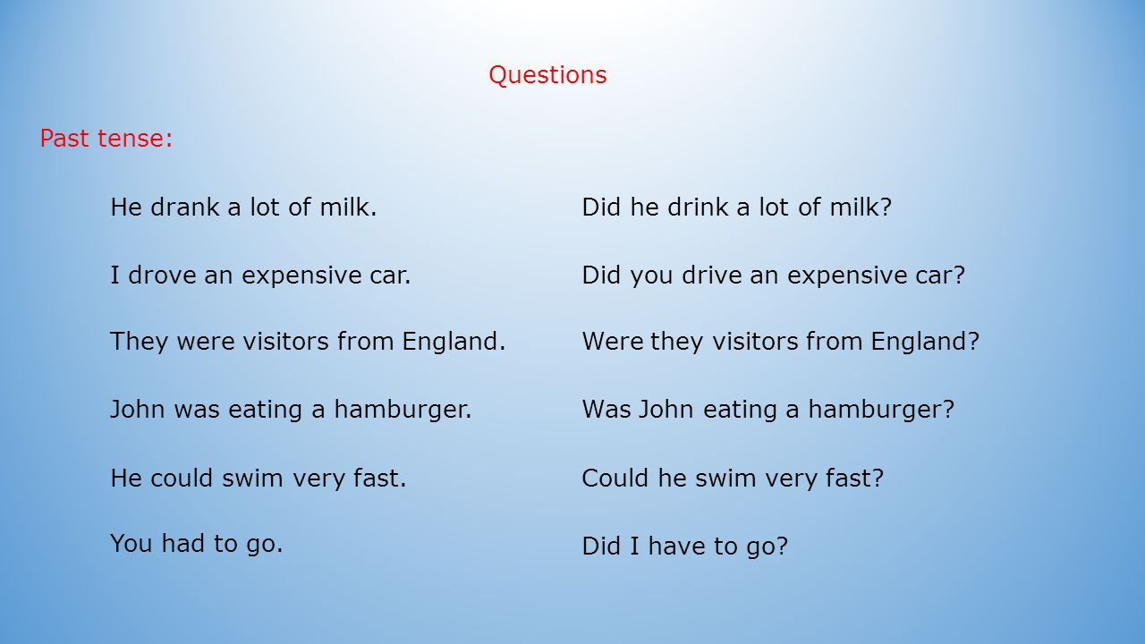 Questions with the verb have Does he have a dog and a cat.