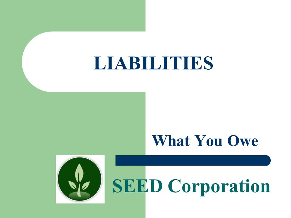 SEED Corporation LIABILITIES What You Owe