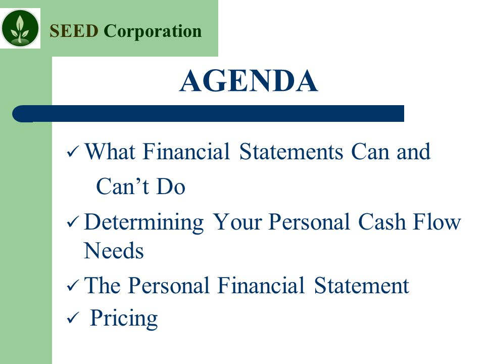 SEED Corporation AGENDA What Financial Statements Can and Can't Do Determining Your Personal Cash Flow Needs The Personal Financial Statement Pricing