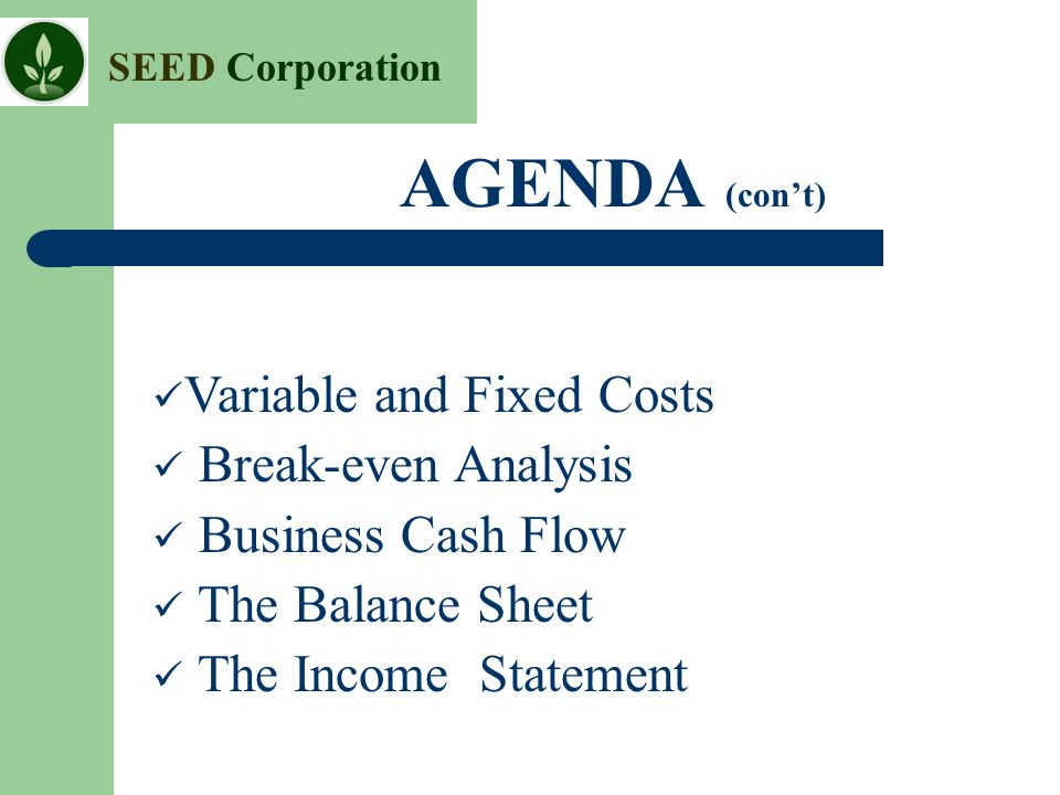 SEED Corporation AGENDA (con't) Variable and Fixed Costs Break-even Analysis Business Cash Flow The Balance Sheet The Income Statement