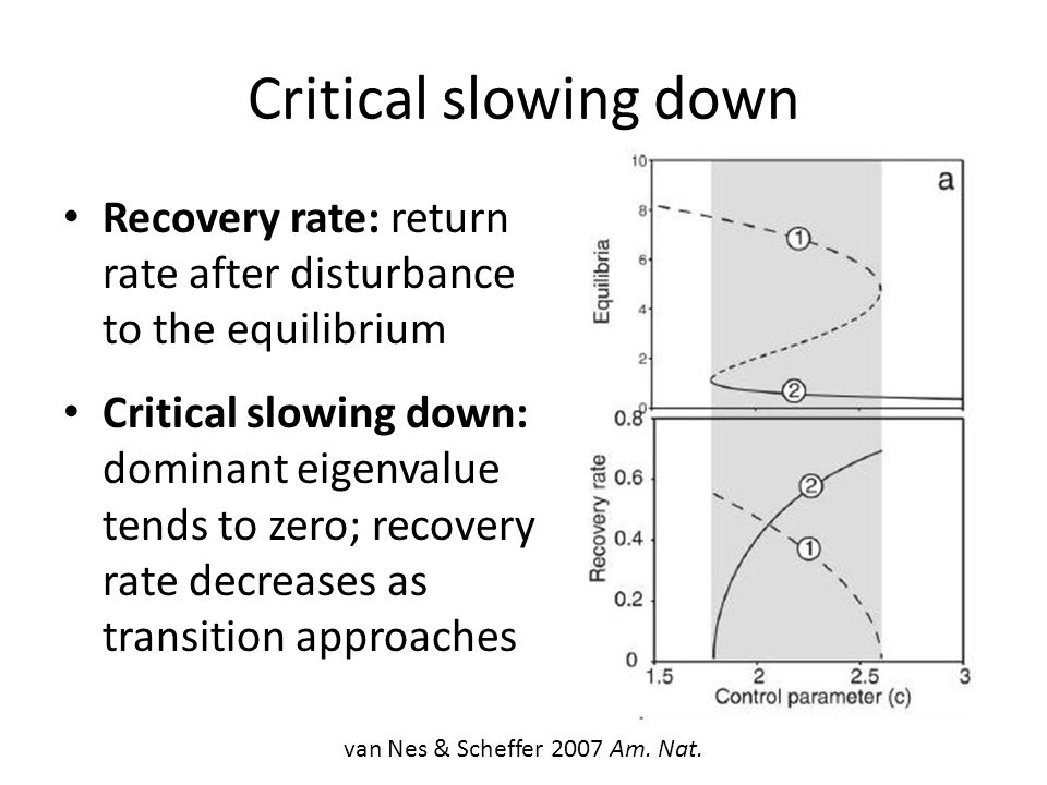 Critical slowing down Recovery rate: return rate after disturbance to the equilibrium Critical slowing down: dominant eigenvalue tends to zero; recove
