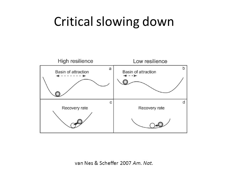Critical slowing down van Nes & Scheffer 2007 Am. Nat.