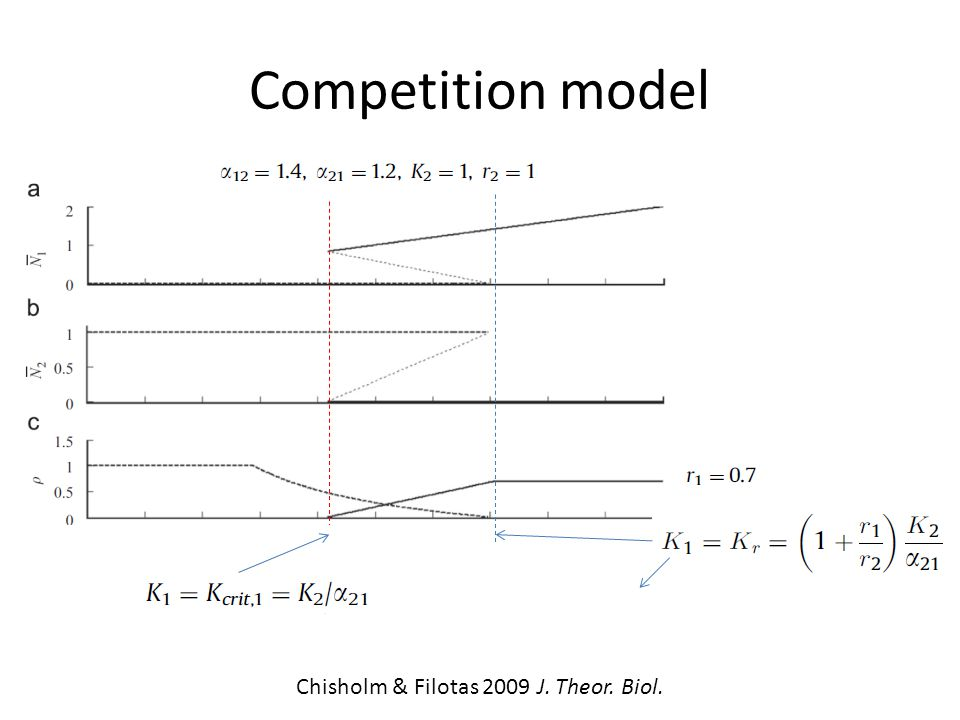 Competition model Chisholm & Filotas 2009 J. Theor. Biol.