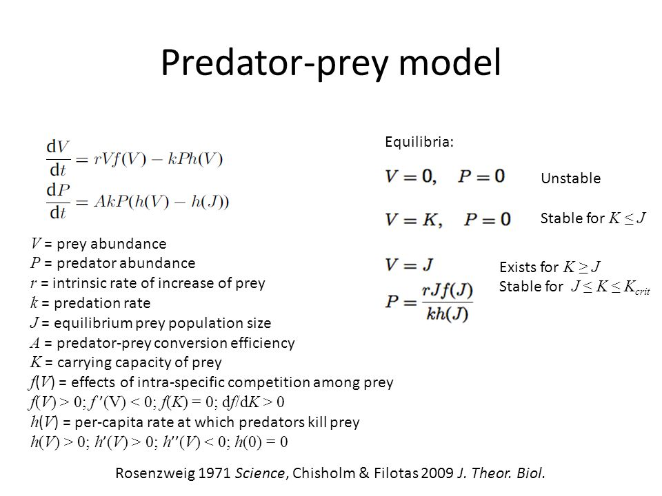 Predator-prey model Rosenzweig 1971 Science, Chisholm & Filotas 2009 J. Theor. Biol. Equilibria: Unstable Stable for K ≤ J Exists for K ≥ J Stable for