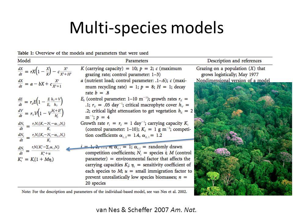 Multi-species models van Nes & Scheffer 2007 Am. Nat.