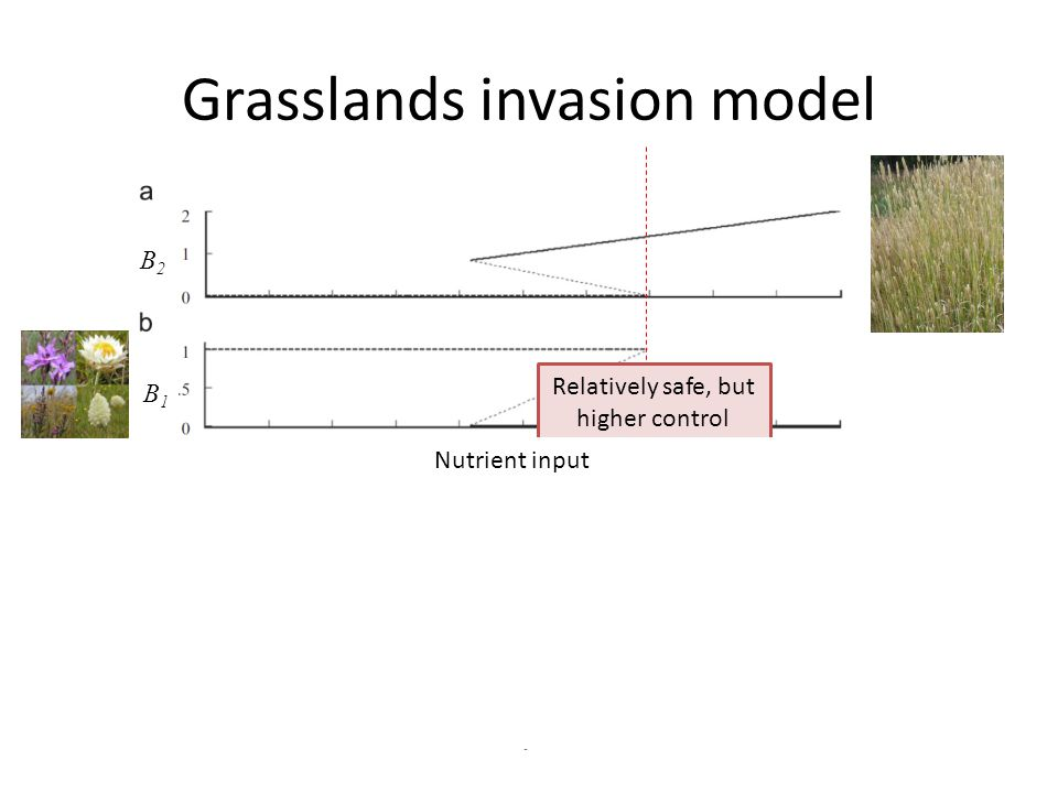 Grasslands invasion model Relatively safe, but higher control costs. Riskier, but lower control costs. Nutrient input B2B2 B1B1