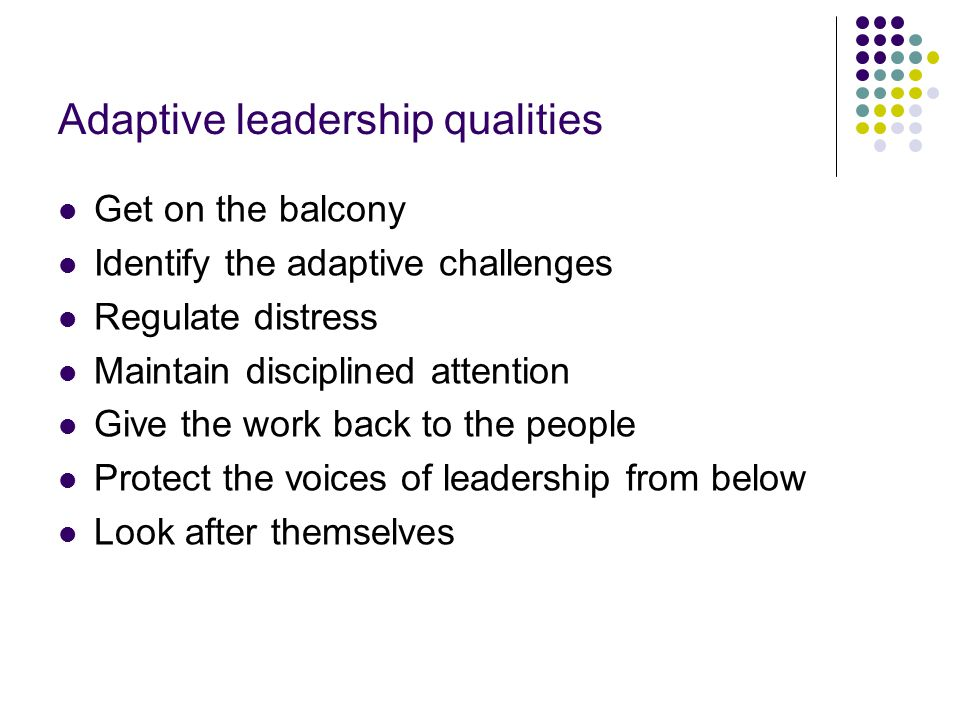 Adaptive leadership qualities Get on the balcony Identify the adaptive challenges Regulate distress Maintain disciplined attention Give the work back to the people Protect the voices of leadership from below Look after themselves