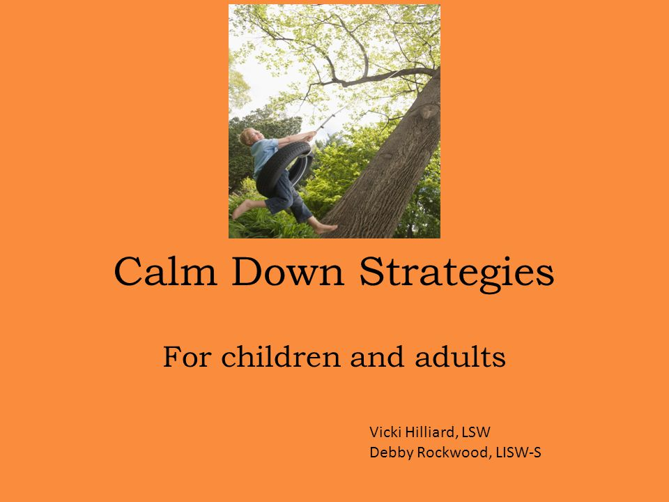 Calm Down Strategies For children and adults Vicki Hilliard, LSW Debby Rockwood, LISW-S