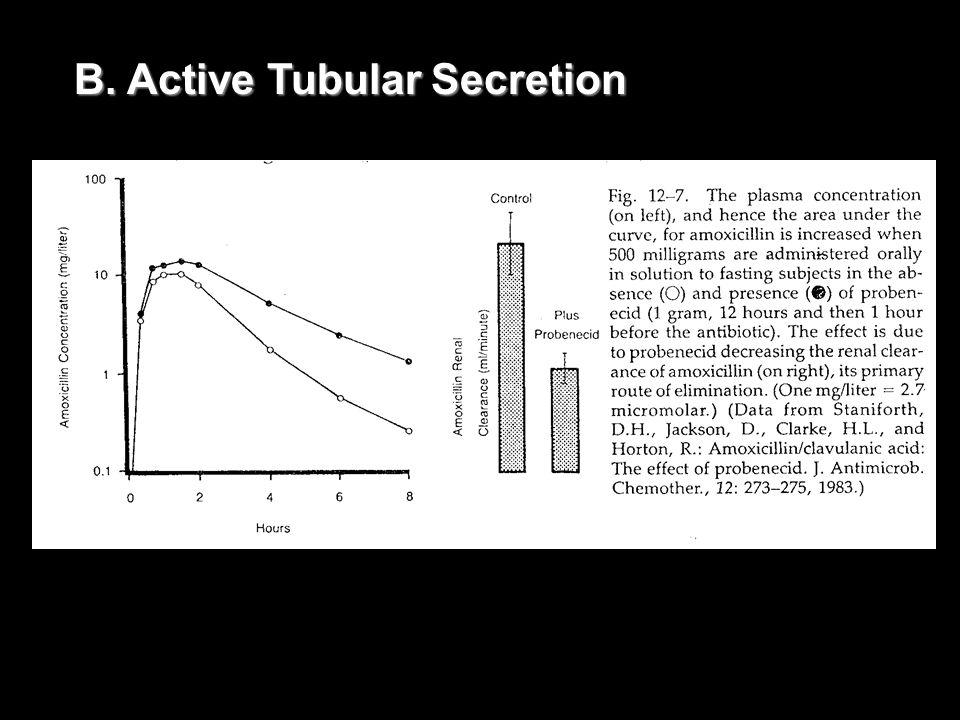 B. Active Tubular Secretion
