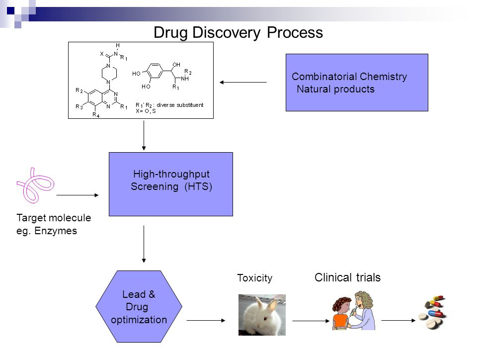 Drug Discovery Process Target molecule eg. Enzymes High-throughput Screening (HTS) Combinatorial Chemistry Natural products Lead & Drug optimization T