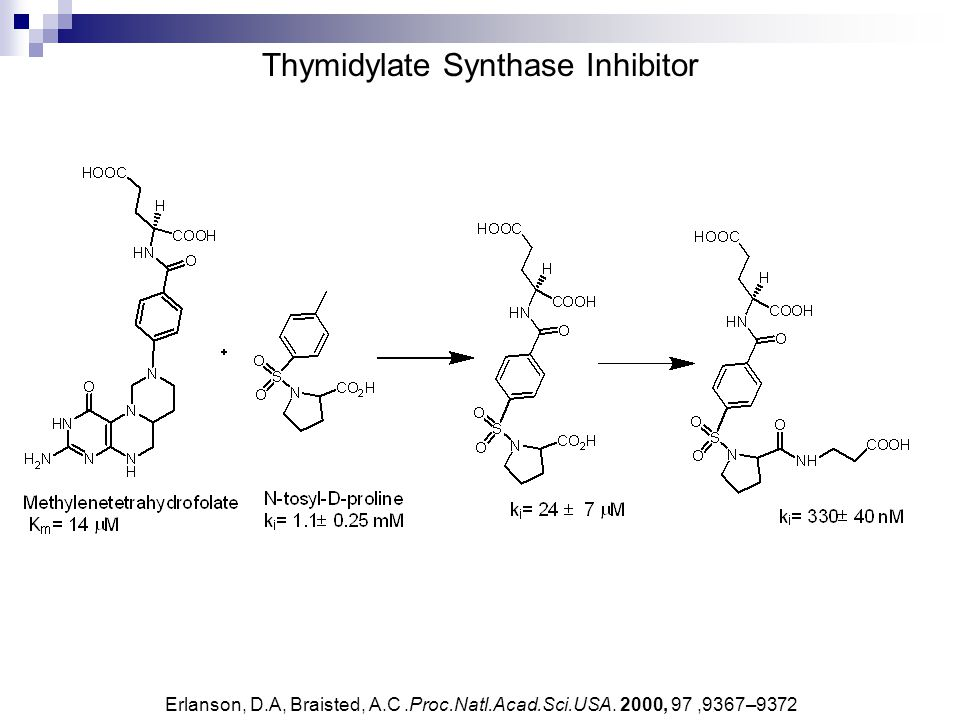 Thymidylate Synthase Inhibitor Erlanson, D.A, Braisted, A.C.Proc.Natl.Acad.Sci.USA. 2000, 97,9367–9372