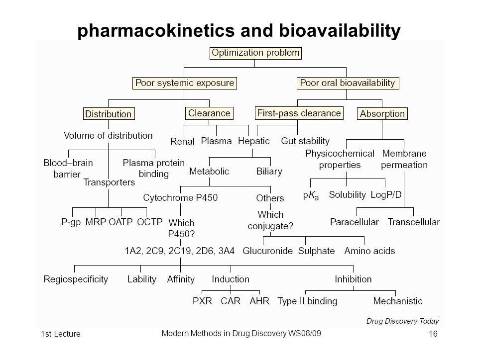 1st Lecture Modern Methods in Drug Discovery WS08/09 16 pharmacokinetics and bioavailability