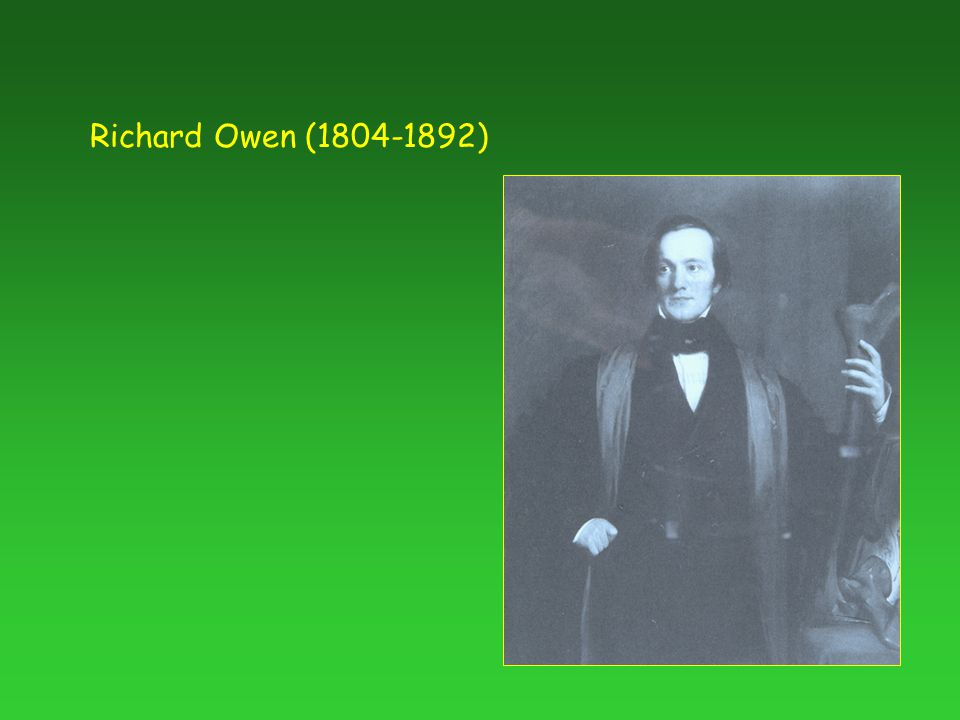 Richard Owen ( )