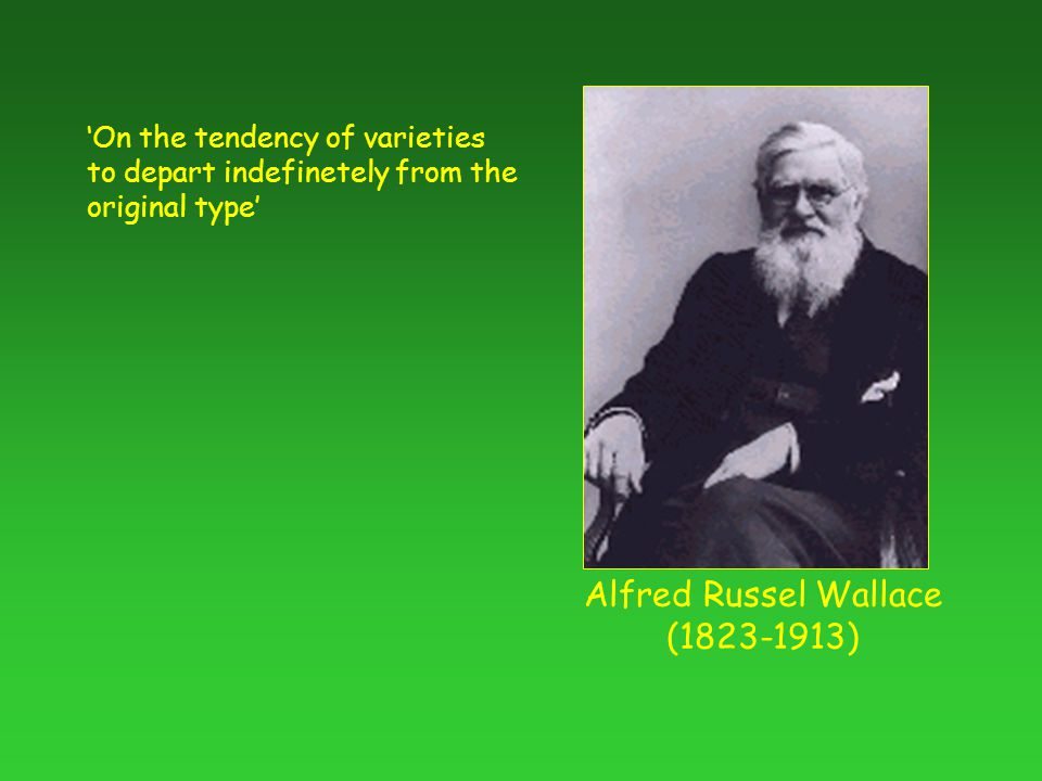 Alfred Russel Wallace ( ) 'On the tendency of varieties to depart indefinetely from the original type'