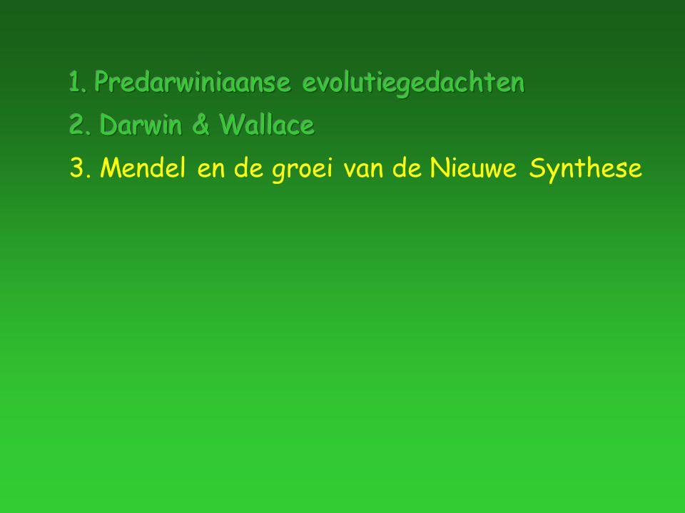 3. Mendel en de groei van de Nieuwe Synthese