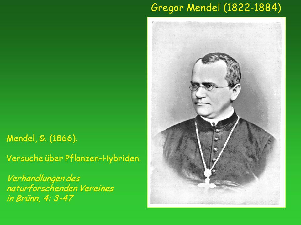 Gregor Mendel (1822-1884) Mendel, G. (1866). Versuche über Pflanzen-Hybriden.