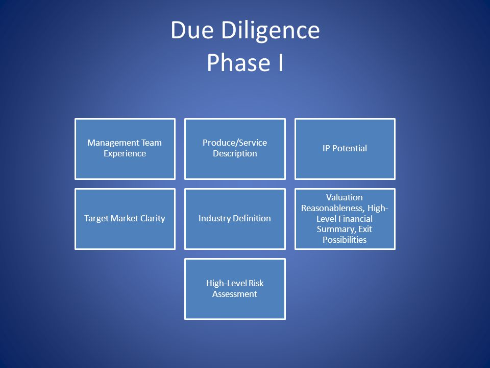 Due Diligence Phase II Management Team Analysis Product/service comparison to direct and indirect competitive offerings IP research and investigation Details on the target market and break- down on the company's marketing plan Competitive matrix with positioning analysis Valuation comparisons and detailed financial analysis, exit scenarios and target ROI Detailed risk assessment