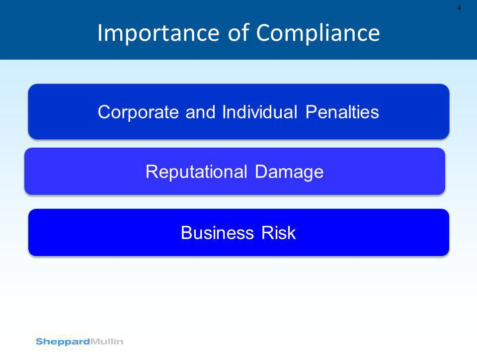 Importance of Compliance 4 Corporate and Individual Penalties Reputational Damage Business Risk
