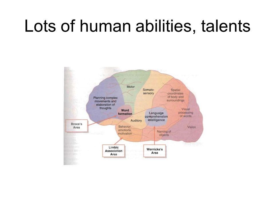 Lots of human abilities, talents