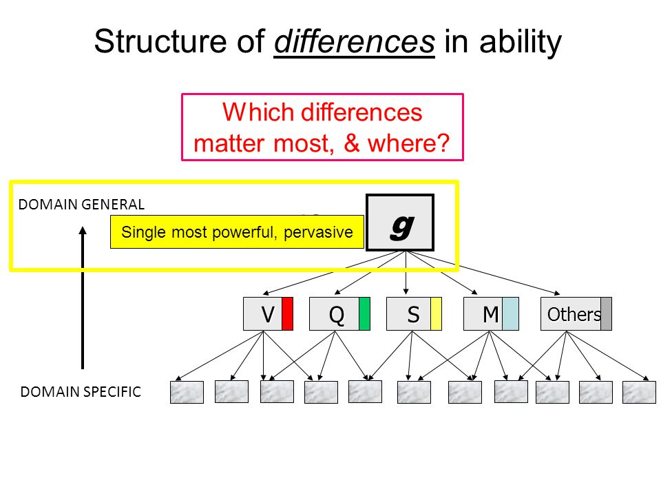 Structure of differences in ability g VQSMOthers DOMAIN GENERAL DOMAIN SPECIFIC IQ ≈ IQ ≈ Less impact, domain specific Which differences matter most, & where?