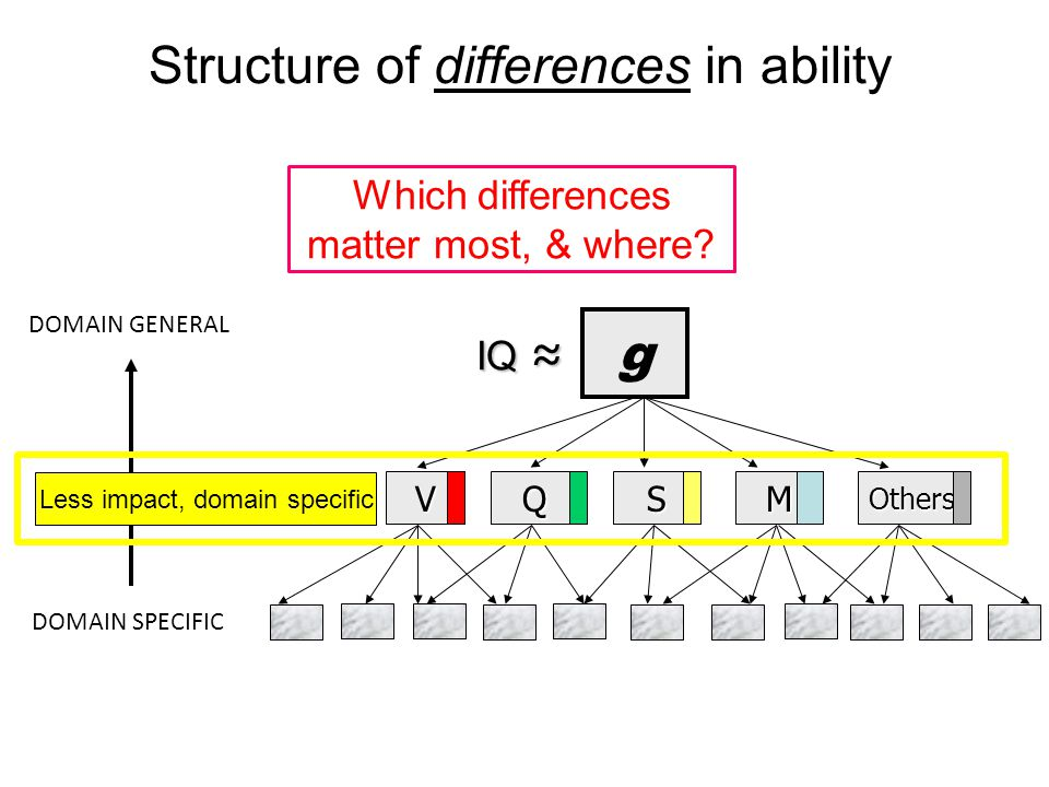 Structure of differences in ability g VQSMOthers DOMAIN GENERAL DOMAIN SPECIFIC IQ ≈ IQ ≈ Less impact, domain specific Which differences matter most, & where