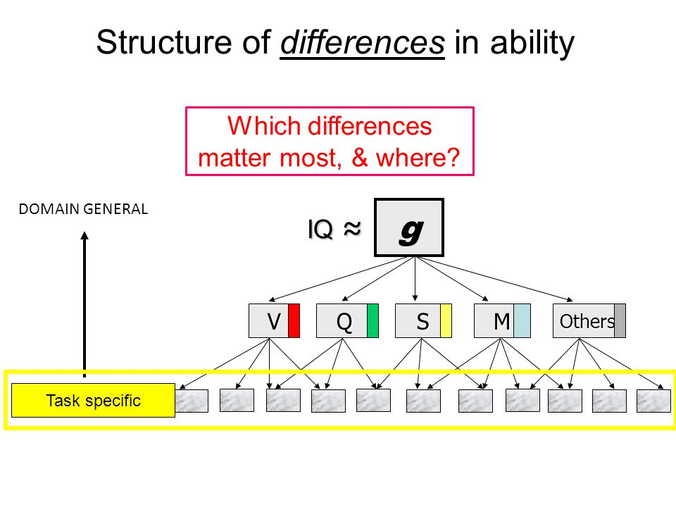 Structure of differences in ability g VQSMOthers DOMAIN GENERAL DOMAIN SPECIFIC IQ ≈ IQ ≈ Task specific Which differences matter most, & where