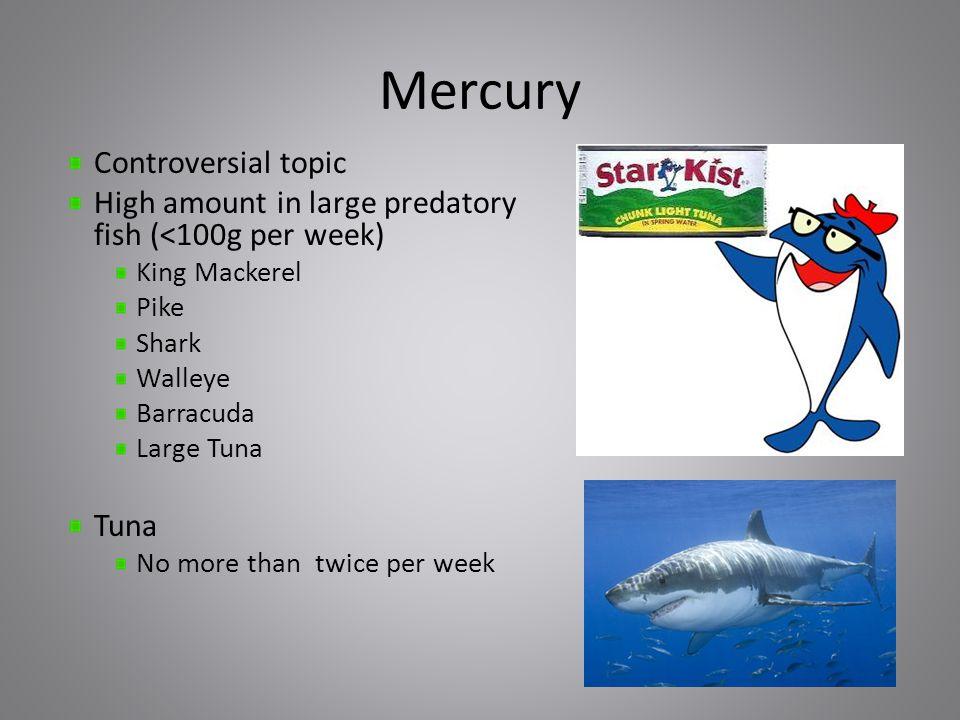 Mercury Controversial topic High amount in large predatory fish (<100g per week) King Mackerel Pike Shark Walleye Barracuda Large Tuna Tuna No more than twice per week