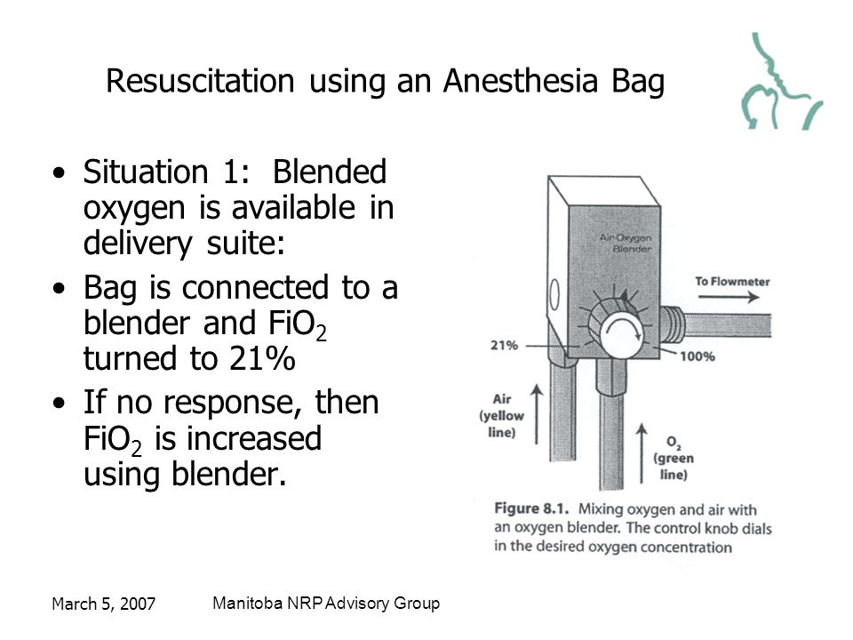 March 5, 2007Manitoba NRP Advisory Group Resuscitation using an Anesthesia Bag Situation 1: Blended oxygen is available in delivery suite: Bag is connected to a blender and FiO 2 turned to 21% If no response, then FiO 2 is increased using blender.
