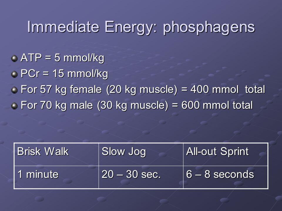 Immediate Energy: phosphagens ATP = 5 mmol/kg PCr = 15 mmol/kg For 57 kg female (20 kg muscle) = 400 mmol total For 70 kg male (30 kg muscle) = 600 mm