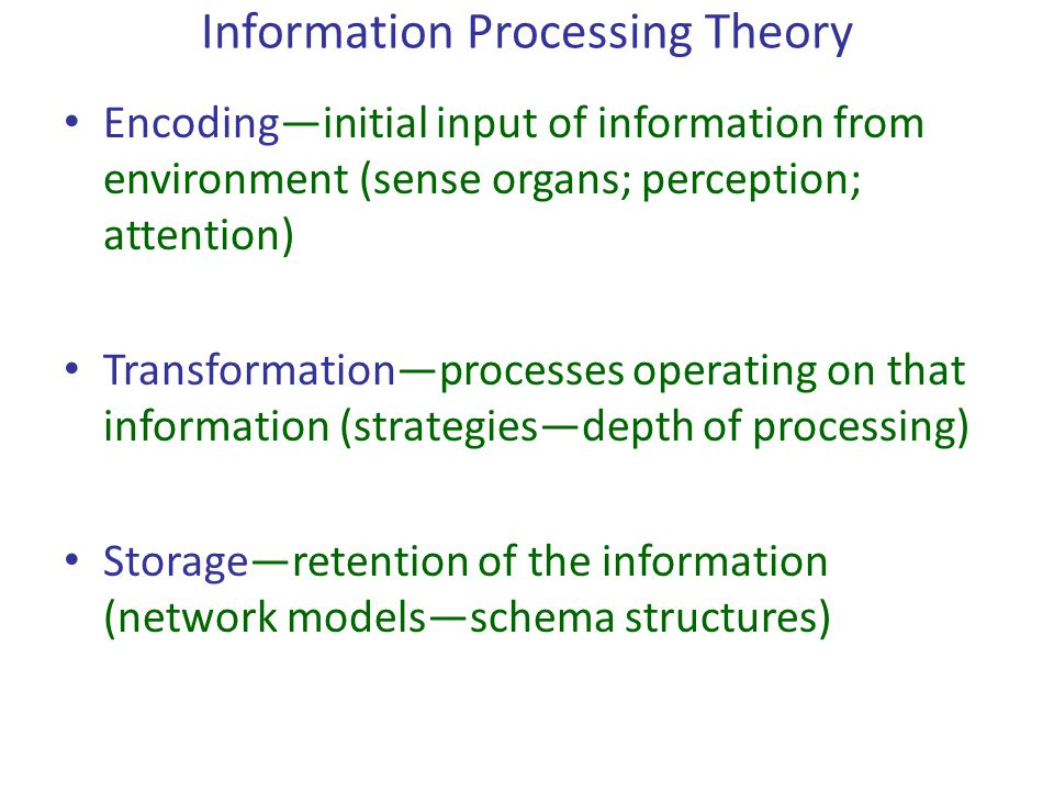Information Processing Theory Encoding—initial input of information from environment (sense organs; perception; attention) Transformation—processes op