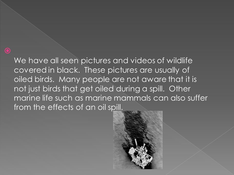 We have all seen pictures and videos of wildlife covered in black.
