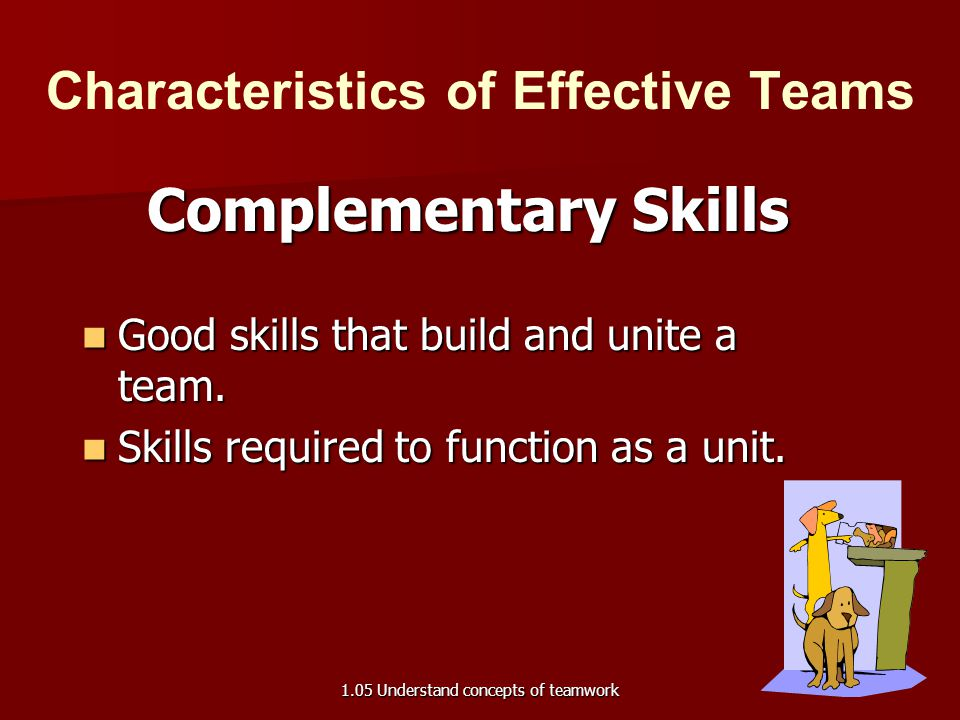 Characteristics of Effective Teams Complementary Skills Good skills that build and unite a team. Good skills that build and unite a team. Skills requi
