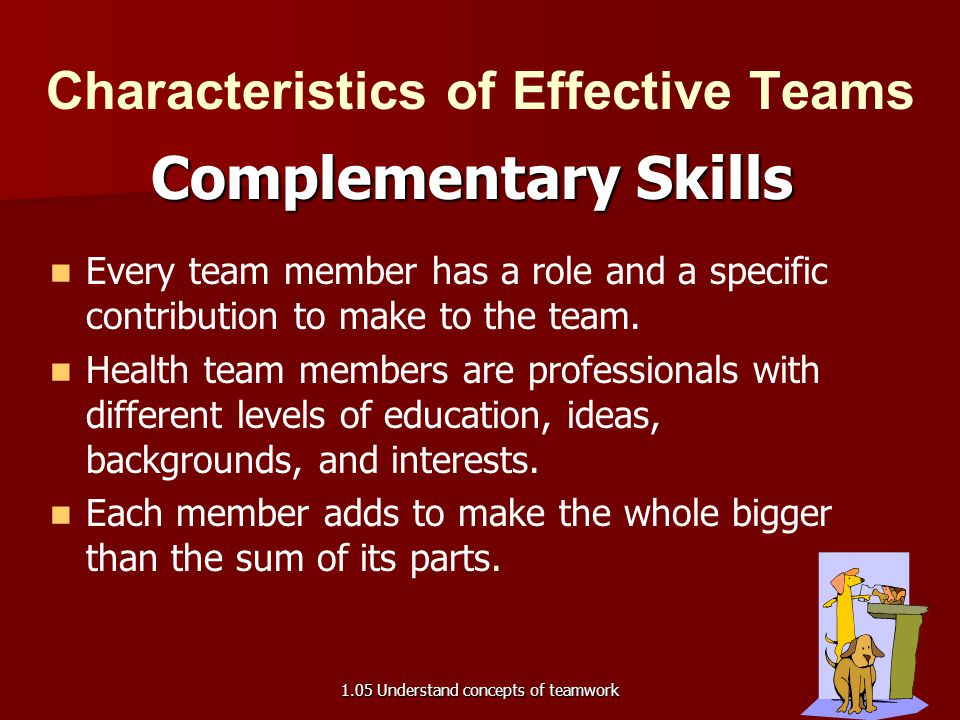 Characteristics of Effective Teams Complementary Skills Every team member has a role and a specific contribution to make to the team. Health team memb