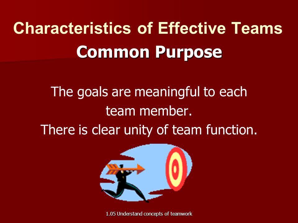 Characteristics of Effective Teams Complementary Skills Every team member has a role and a specific contribution to make to the team.