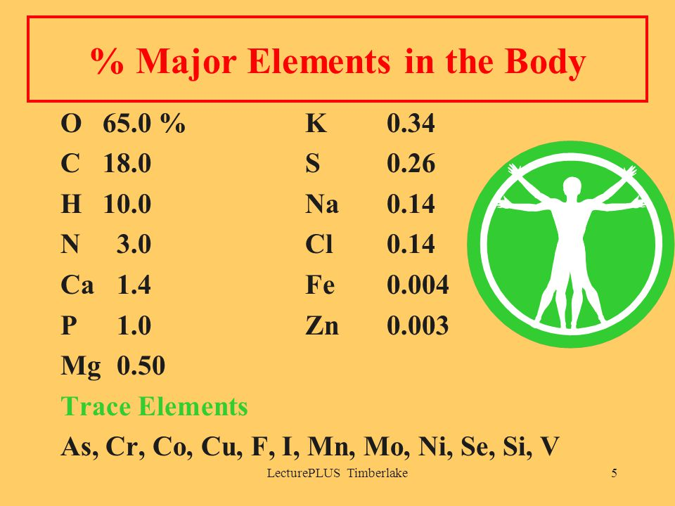 LecturePLUS Timberlake5 % Major Elements in the Body O65.0 %K 0.34 C18.0S 0.26 H10.0Na 0.14 N 3.0Cl 0.14 Ca 1.4Fe 0.004 P 1.0 Zn 0.003 Mg 0.50 Trace Elements As, Cr, Co, Cu, F, I, Mn, Mo, Ni, Se, Si, V