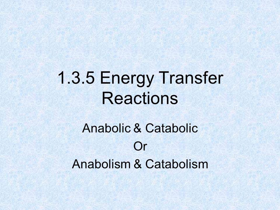 1.3.5 Energy Transfer Reactions Anabolic & Catabolic Or Anabolism & Catabolism
