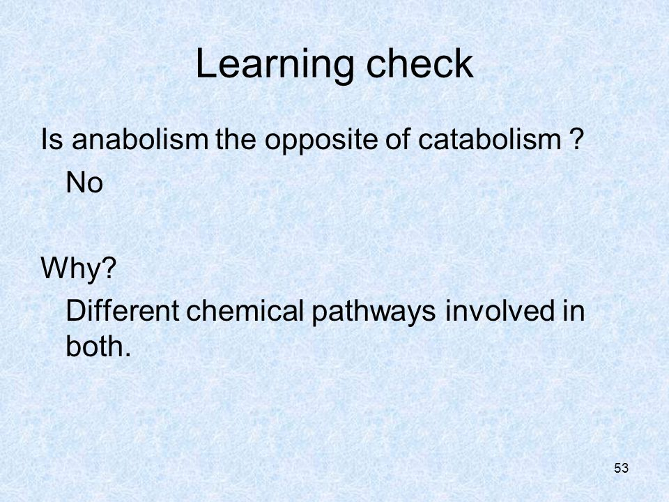 53 Learning check Is anabolism the opposite of catabolism .