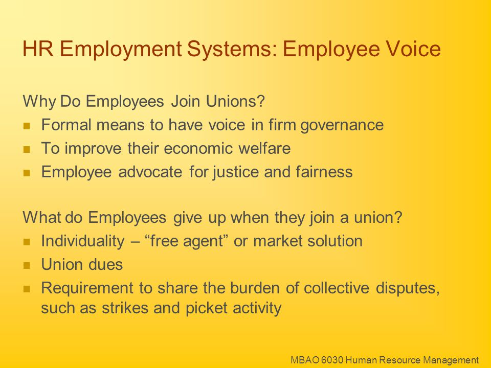 MBAO 6030 Human Resource Management HR Employment Systems: Employee Voice Why Do Employees Join Unions.