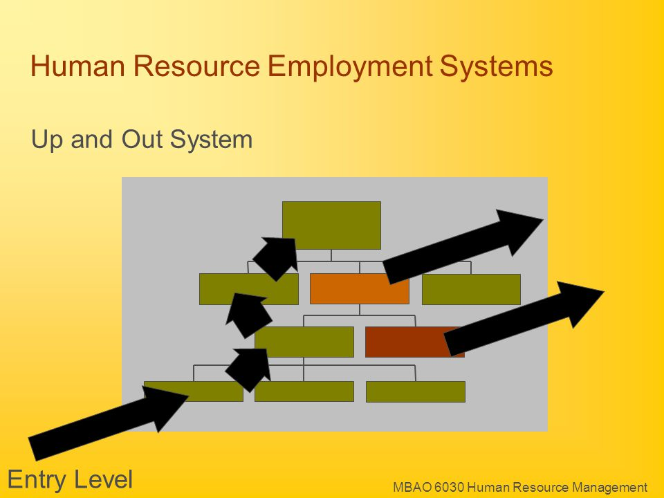 MBAO 6030 Human Resource Management Human Resource Employment Systems Up and Out System Entry Level