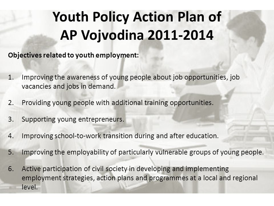Youth Policy Action Plan of AP Vojvodina Objectives related to youth employment: 1.Improving the awareness of young people about job opportunities, job vacancies and jobs in demand.