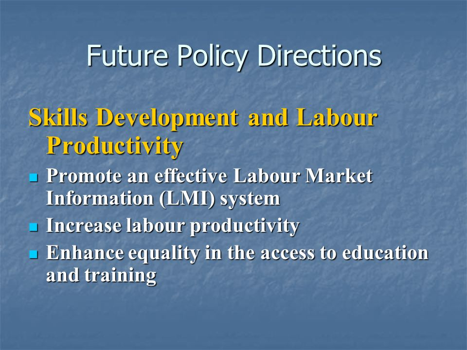 Future Policy Directions Skills Development and Labour Productivity Promote an effective Labour Market Information (LMI) system Promote an effective Labour Market Information (LMI) system Increase labour productivity Increase labour productivity Enhance equality in the access to education and training Enhance equality in the access to education and training