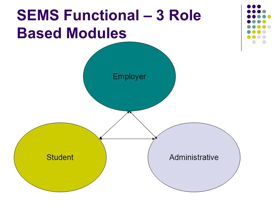 SEMS Functional – 3 Role Based Modules Student Employer Administrative