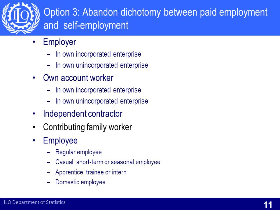 Option 3: Abandon dichotomy between paid employment and self-employment Employer –In own incorporated enterprise –In own unincorporated enterprise Own account worker –In own incorporated enterprise –In own unincorporated enterprise Independent contractor Contributing family worker Employee –Regular employee –Casual, short-term or seasonal employee –Apprentice, trainee or intern –Domestic employee ILO Department of Statistics 11