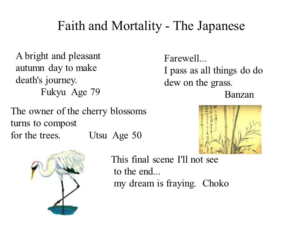 Faith and Mortality - The Japanese A bright and pleasant autumn day to make death's journey. Fukyu Age 79 The owner of the cherry blossoms turns to co