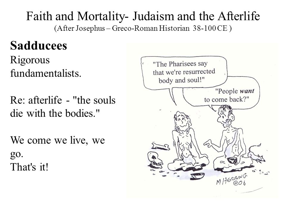 Faith and Mortality- Judaism and the Afterlife (After Josephus – Greco-Roman Historian 38-100 CE ) Sadducees Rigorous fundamentalists.