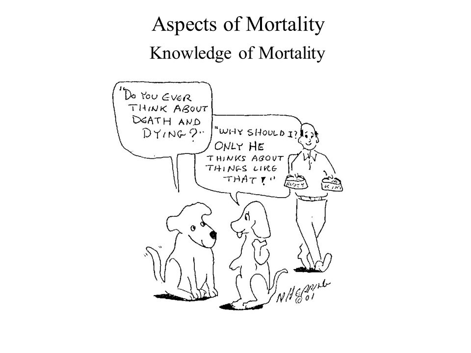Aspects of Mortality Knowledge of Mortality