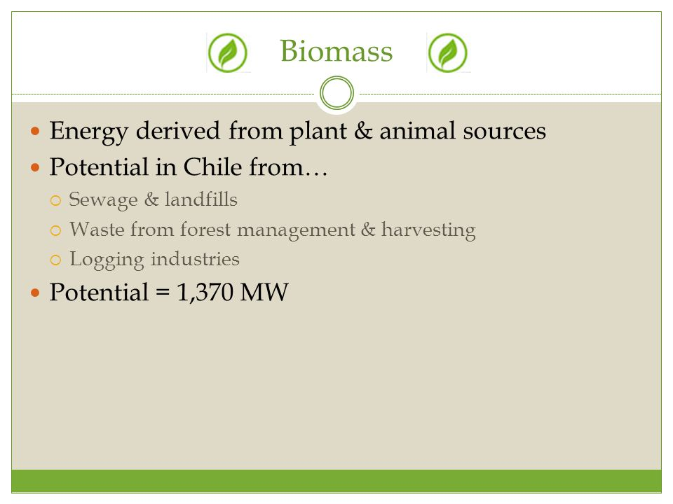 Biomass Energy derived from plant & animal sources Potential in Chile from…  Sewage & landfills  Waste from forest management & harvesting  Logging industries Potential = 1,370 MW