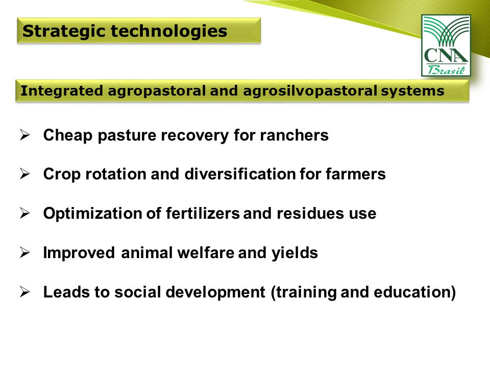 Strategic technologies Integrated agropastoral and agrosilvopastoral systems  Cheap pasture recovery for ranchers  Crop rotation and diversification for farmers  Optimization of fertilizers and residues use  Improved animal welfare and yields  Leads to social development (training and education)